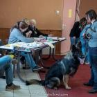 RE St Etienne 2016-356