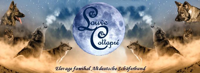 La Louve Du Cottapré