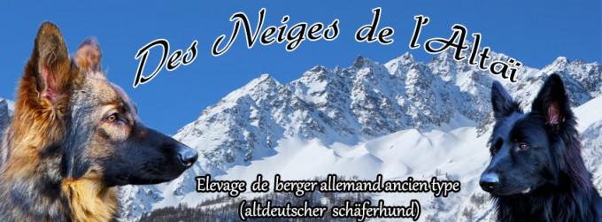 Des Neiges de l'Altaï