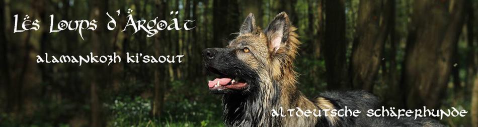 Les loups d'Argoät