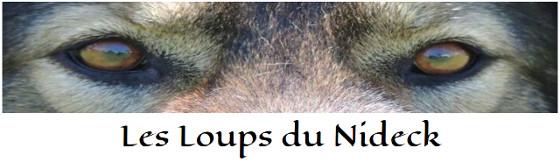 loups-nideck